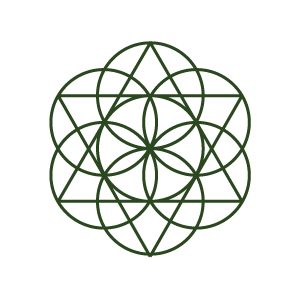 logo pro servery rgb sirsi okraj_155_x_165